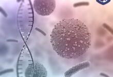 عفونت باکتریایی | علل ابتلا، راه های درمان و پیشگیری