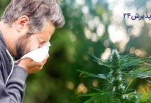 راه های درمان حساسیت فصلی در منزل