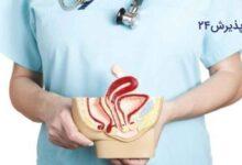 آیا دکتر زنان و زایمان می تواند به درمان عفونت واژن و ترمیم پرده بکارت بپردازد؟ دکتر طب سنتی چطور؟